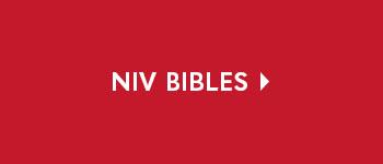 NIV BIbles