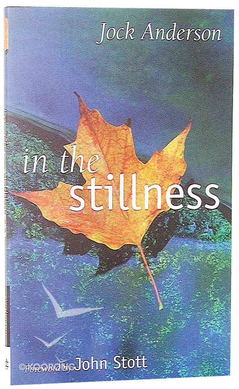 In the Stillness Paperback