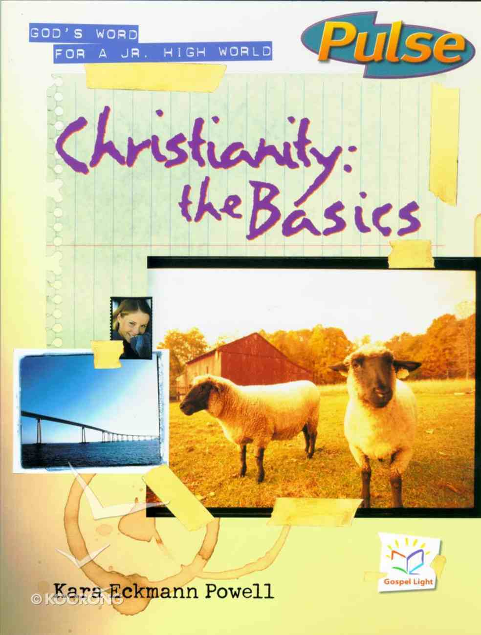 Christianity the Basics (Reproducible) (#1 in Pulse Series) Paperback