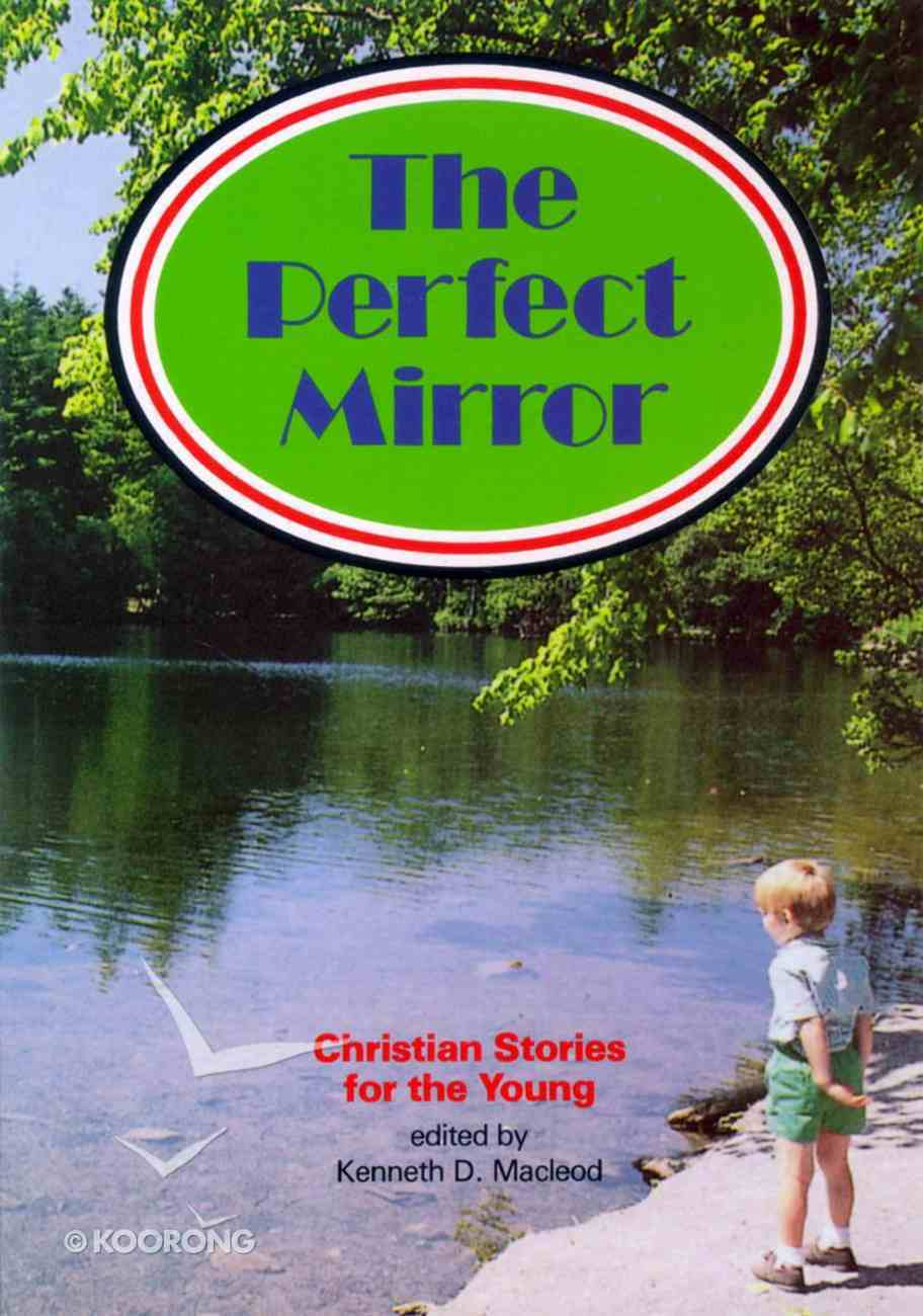 The Perfect Mirror Paperback