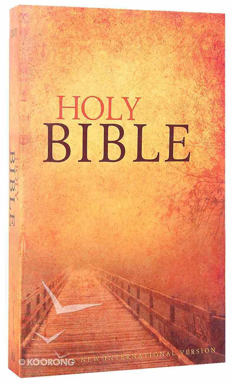 TNIV Paperback: Holy Bible Cover Paperback