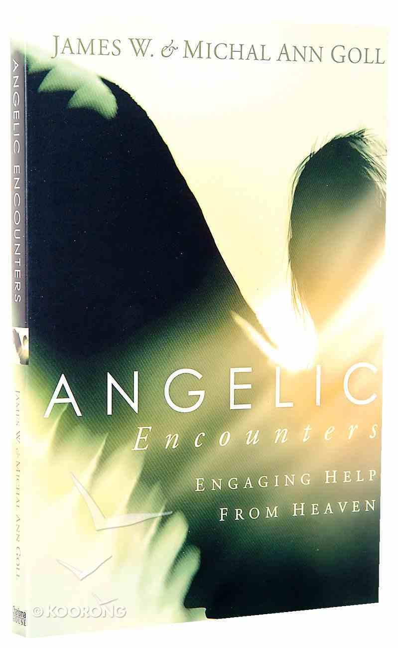 Angelic Encounters Paperback