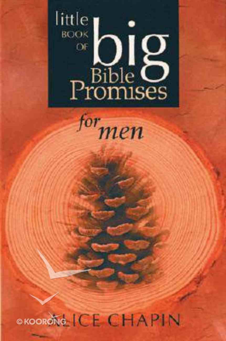 Little Book of Big Bible Promises For Men Paperback
