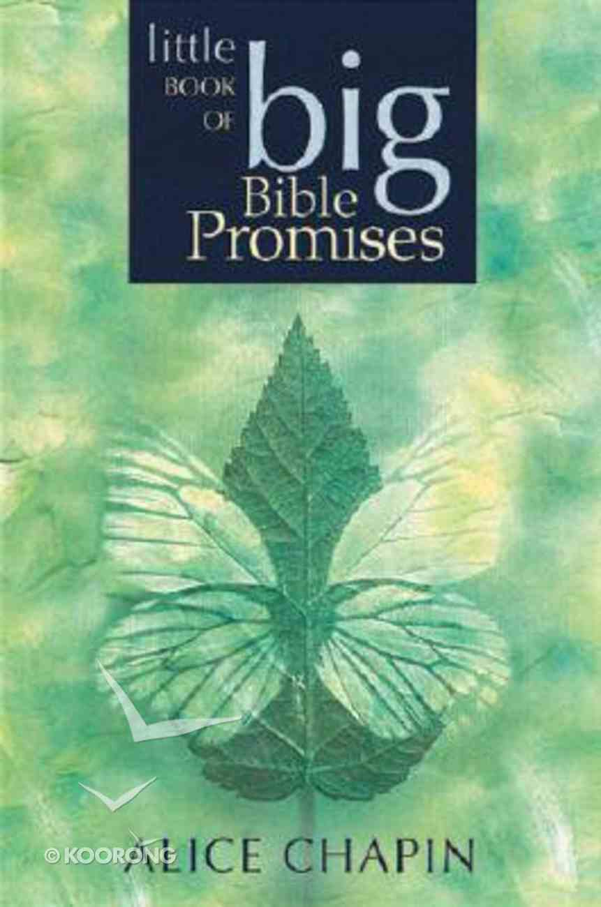 Little Book of Big Bible Promises Paperback