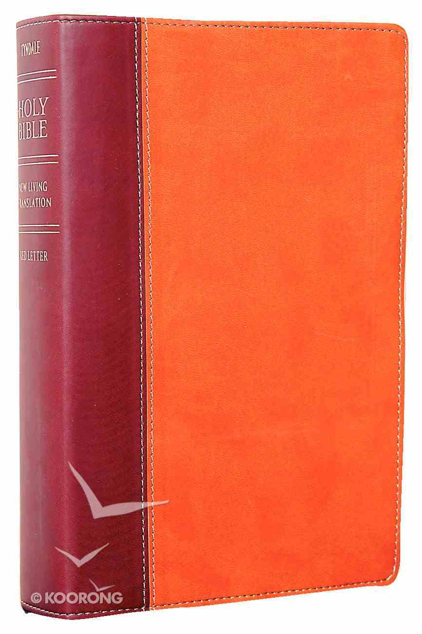 NLT Personal Size Large Print Bible Tutone Brown/Tan Imitation Leather