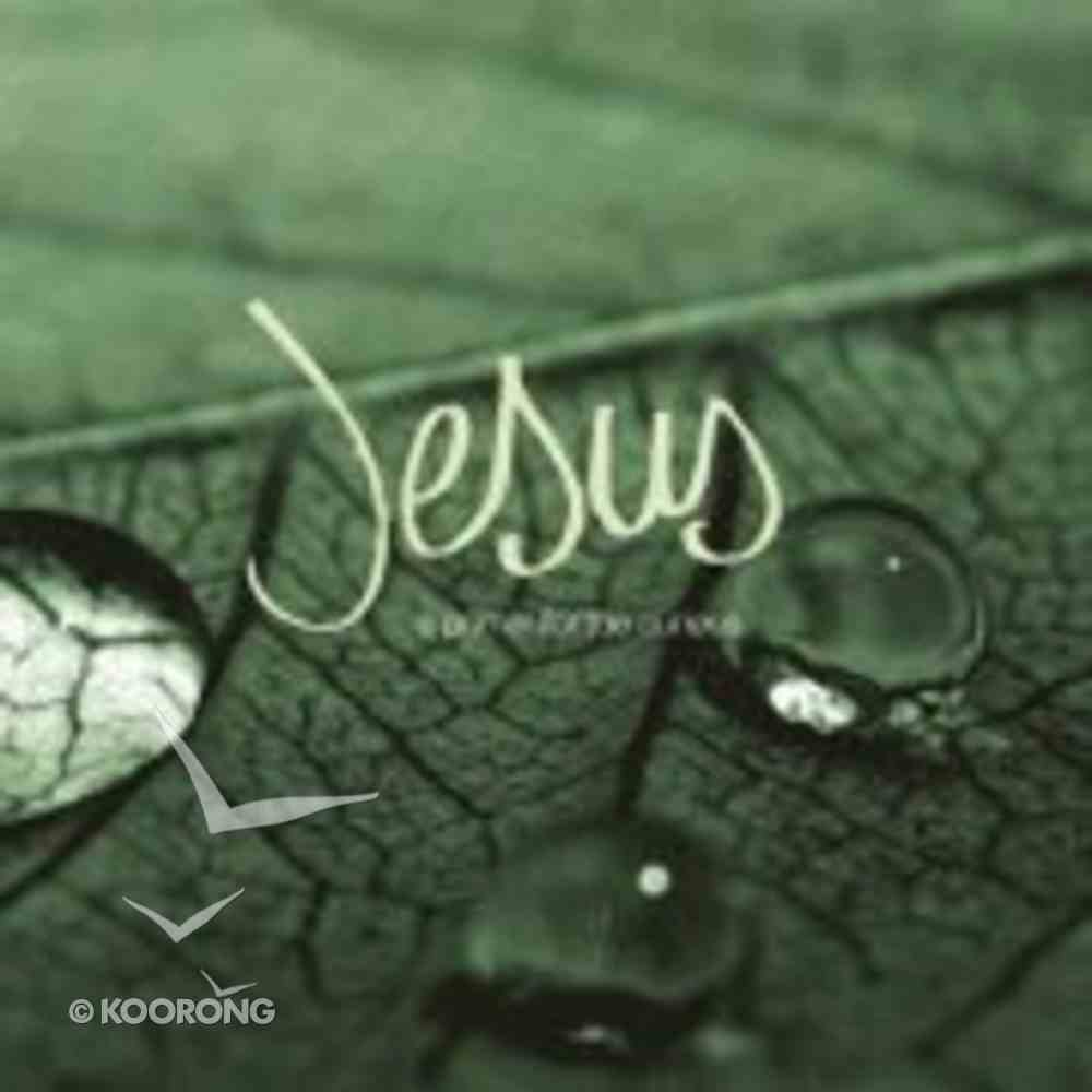 Jesus: A Primer For the Curious Booklet