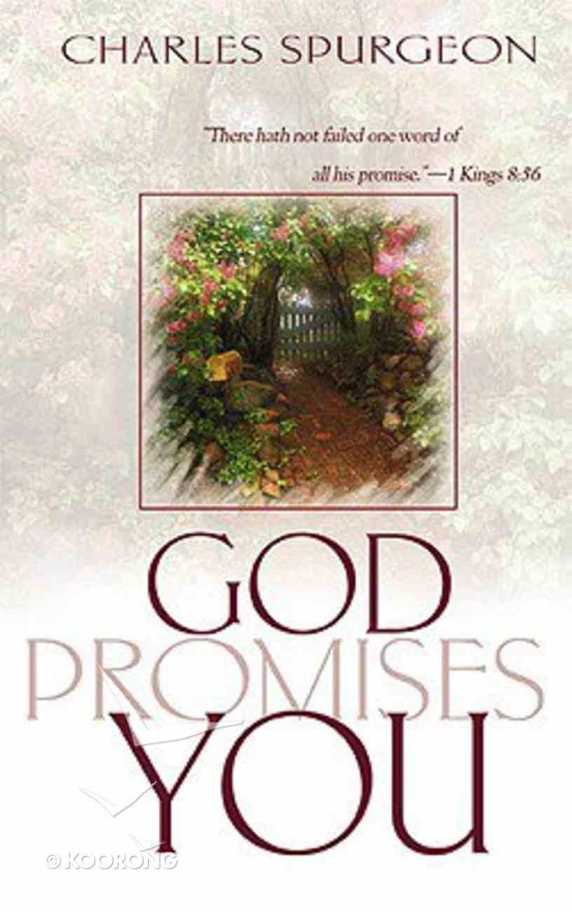 God Promises You Paperback