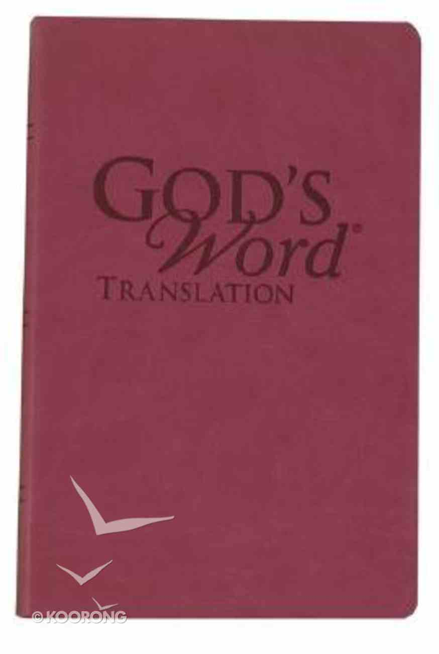 God's Word Handi-Size Sahara Sunrise Imitation Leather