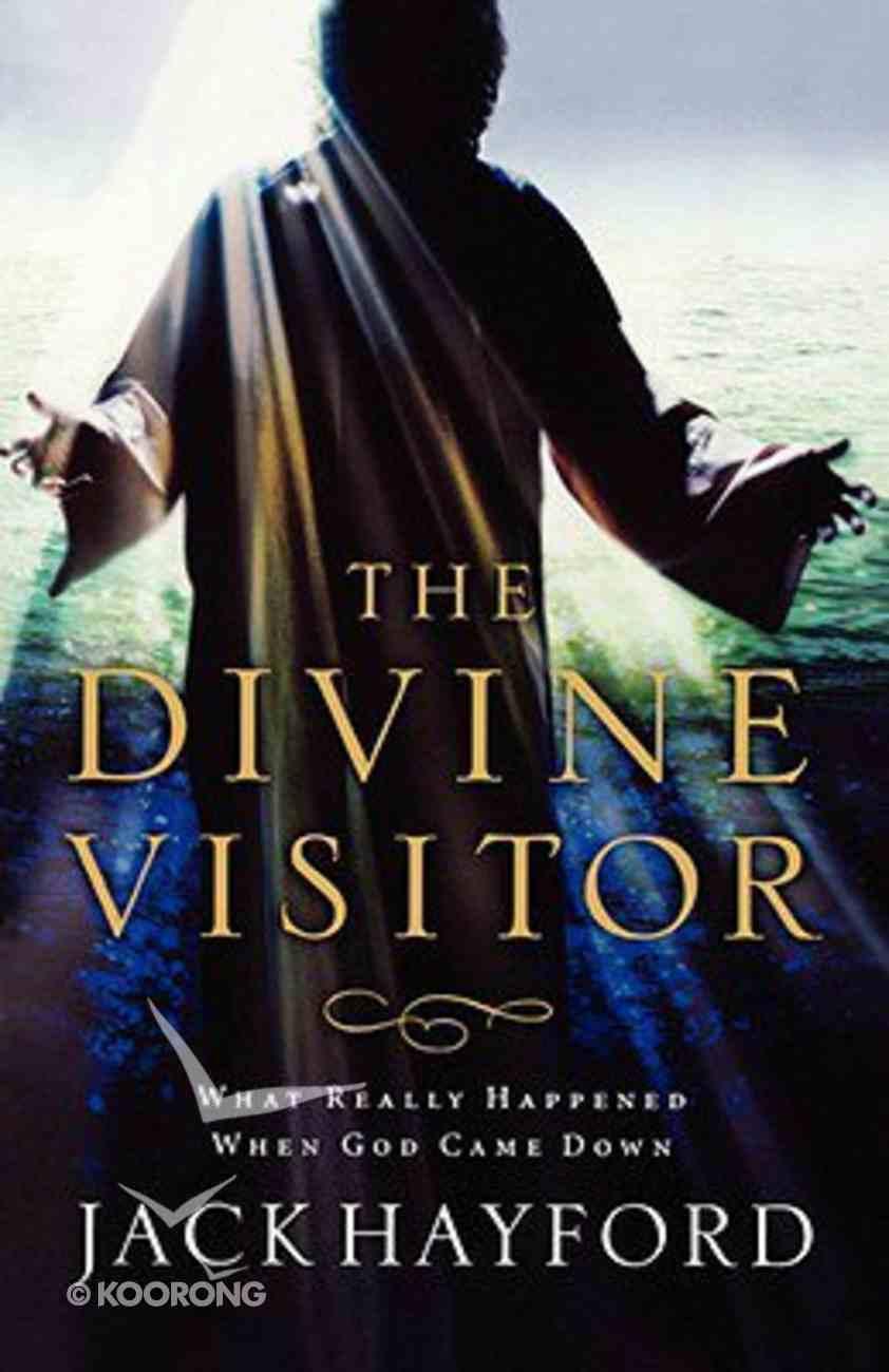 Divine Visitor Paperback