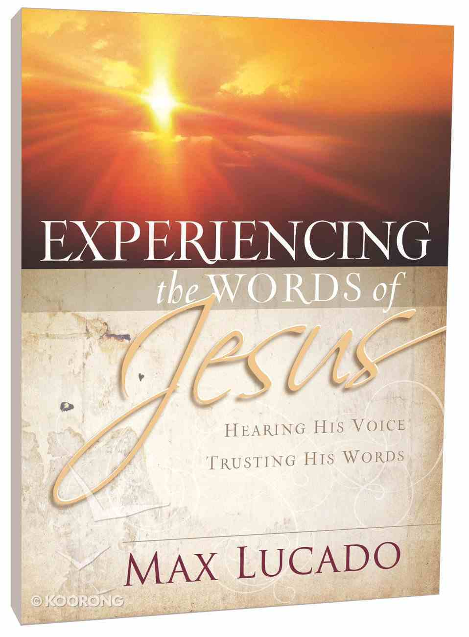 Experiencing the Words of Jesus (Workbook) Paperback