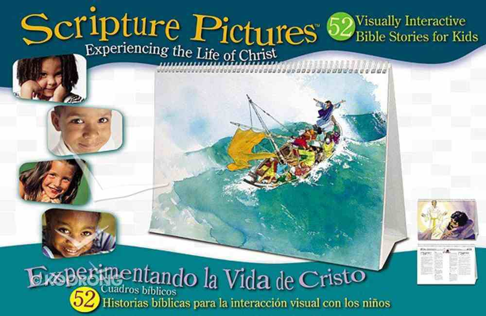 Scripture Pictures: NT Experiencing the Life of Christ (Lessons In Spanish And English) Spiral