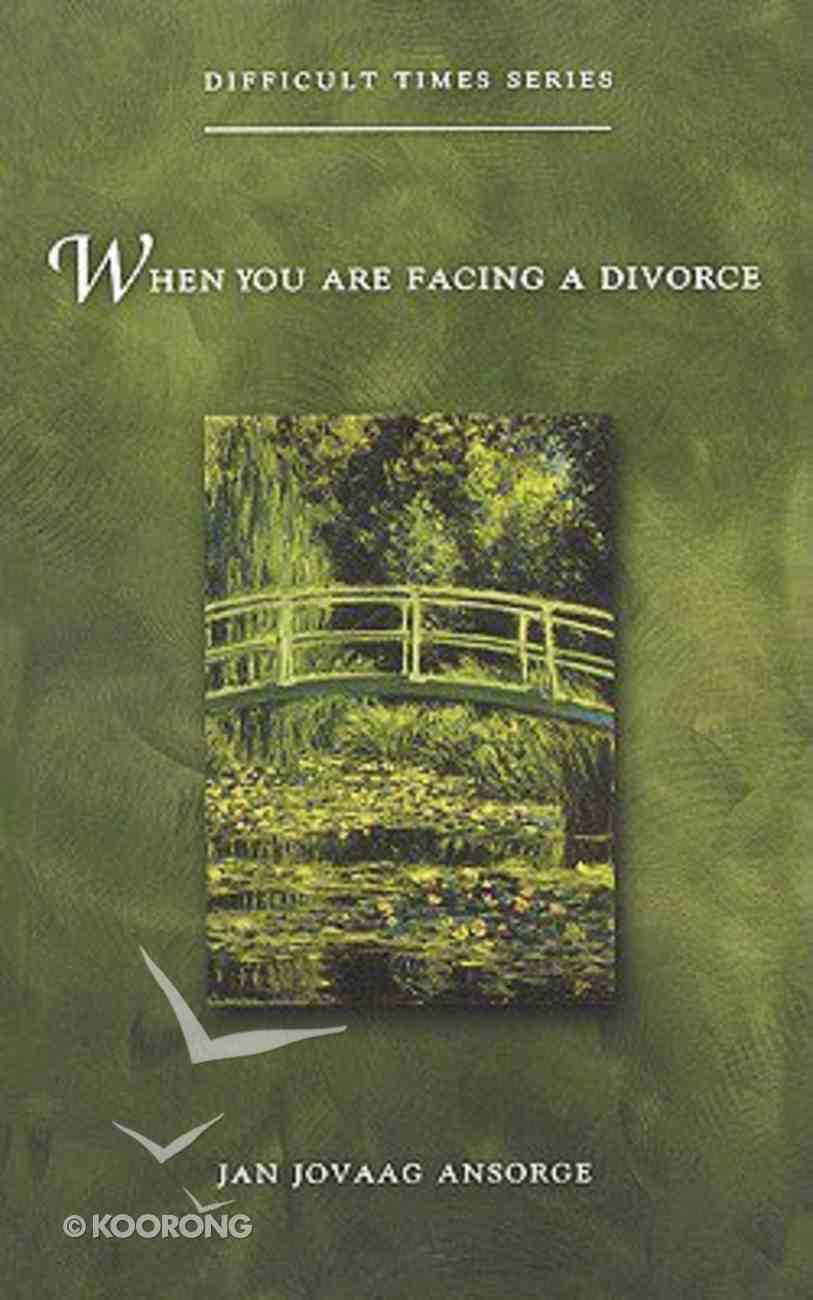 When You Are Facing a Divorce Paperback