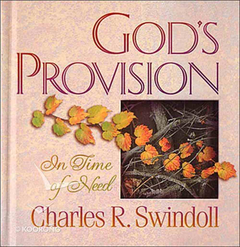 God's Provision in Time of Need Hardback