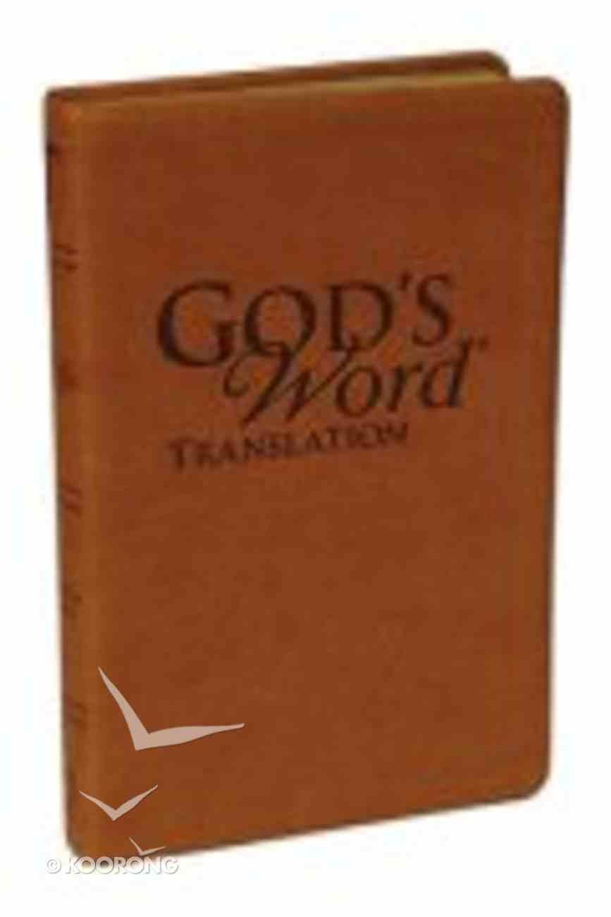 God's Word Handi-Size Saddle Imitation Leather