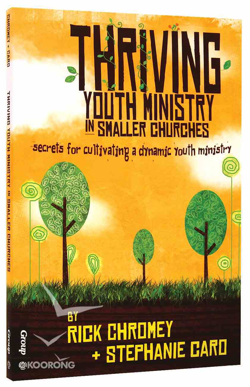 Thriving Youth Ministry in Smaller Churches Paperback