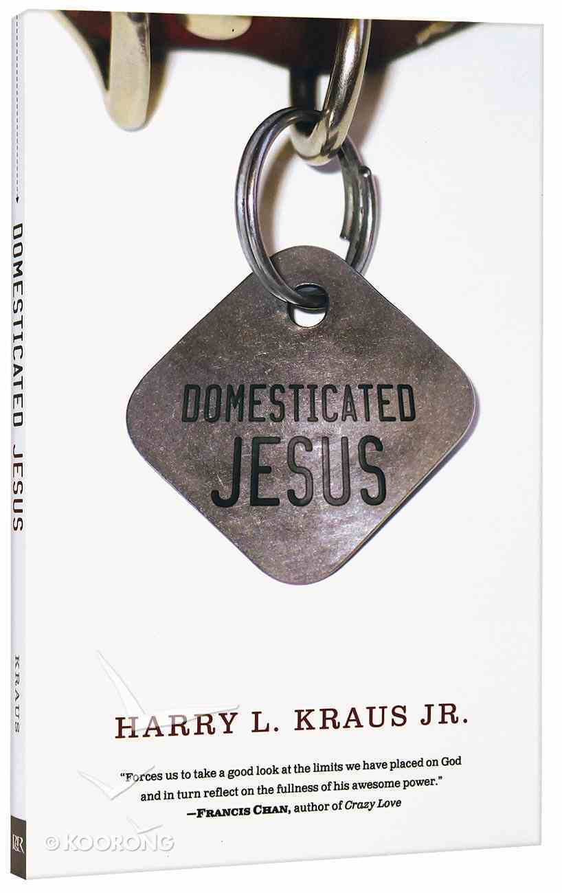 Domesticated Jesus Paperback