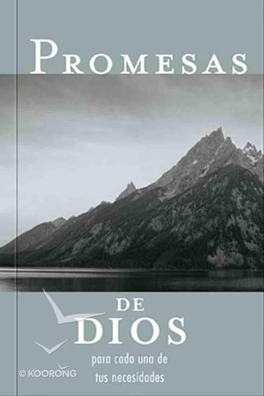 Promesas De Dios Para Cada Una De Tus Necesidades (God's Promise For Your Every Need) Paperback