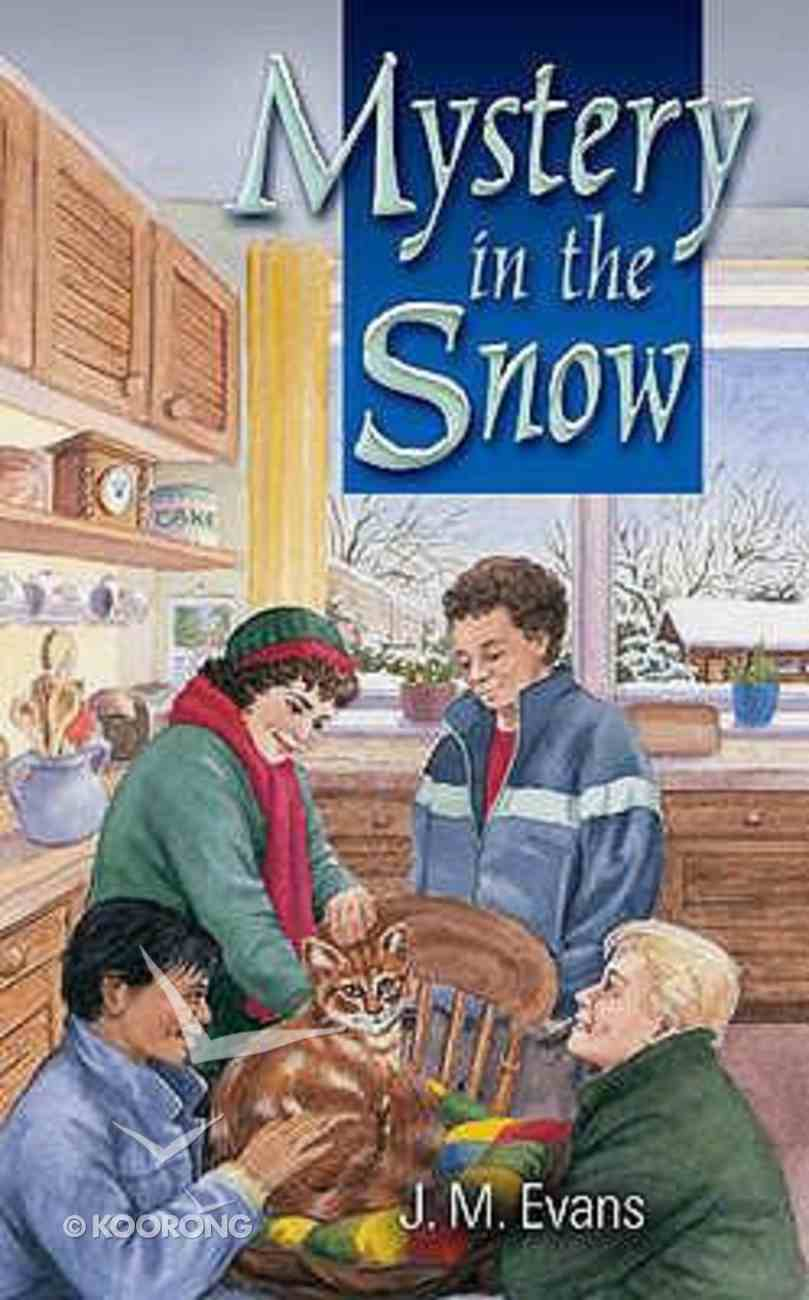 Mystery in the Snow Paperback