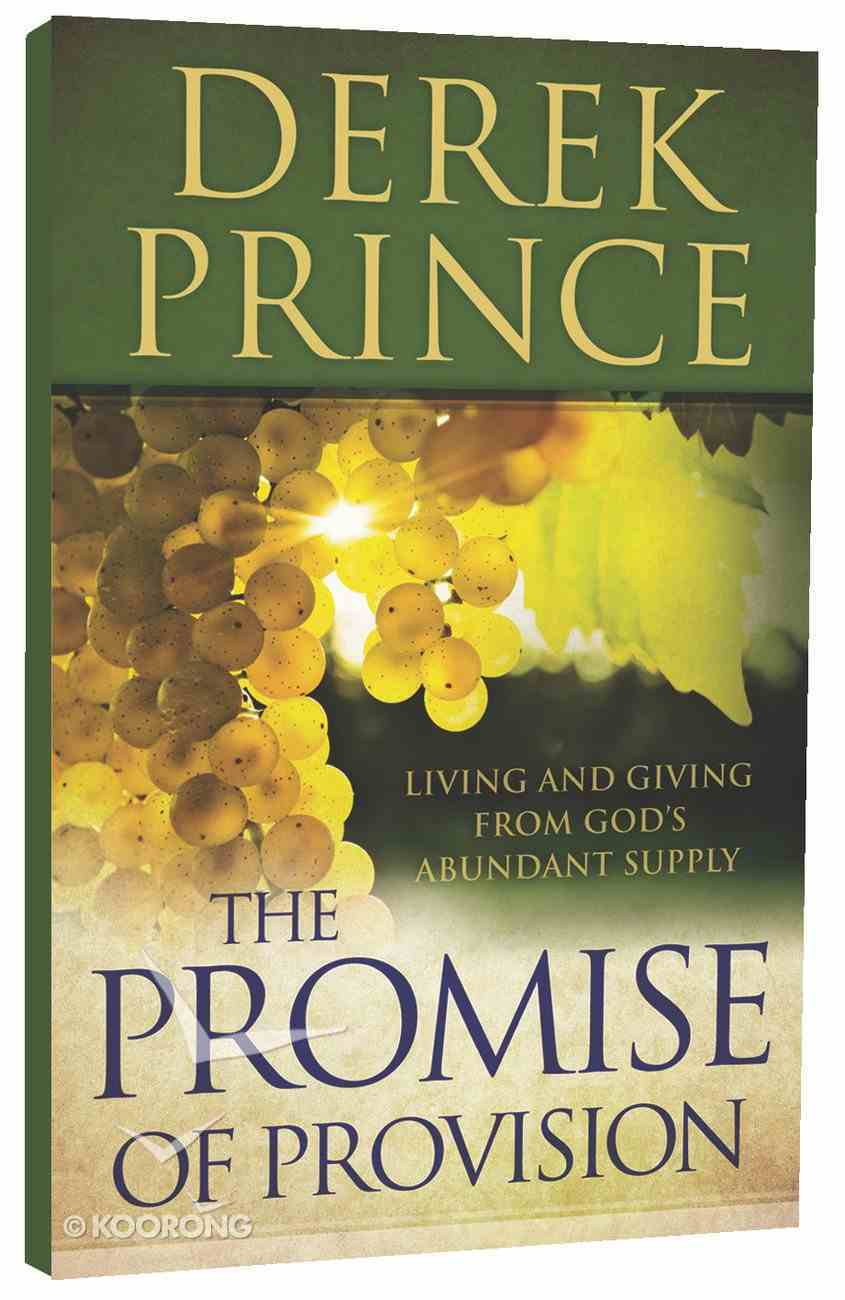 The Promise of Provision Paperback