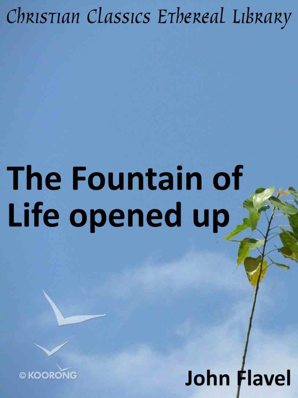 Fountain of Life Opened Up eBook