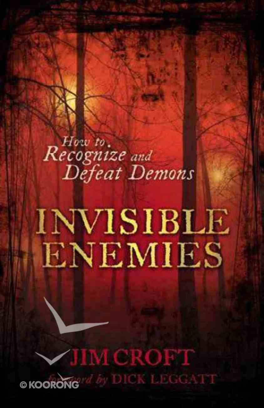 Invisible Enemies Paperback