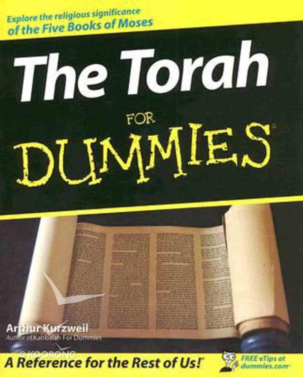 The Torah For Dummies Paperback