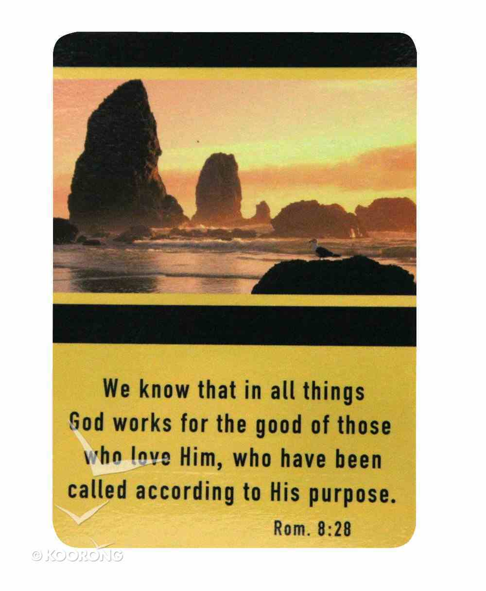 Friendship Magnet: We Know That in All Things. Romans 8:28 Novelty