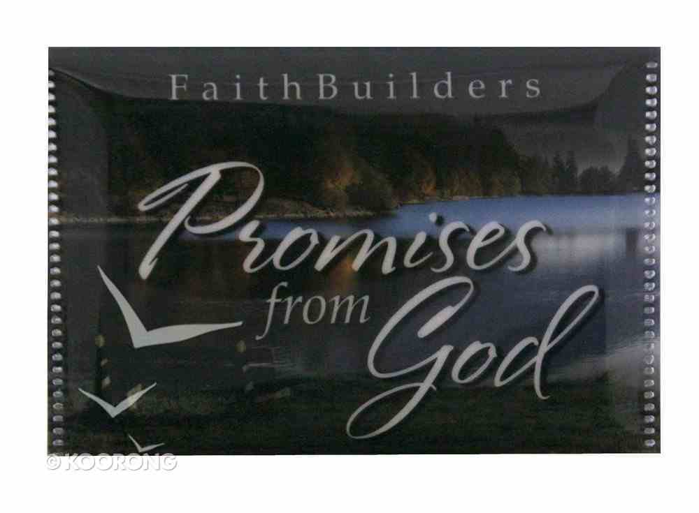 Faithbuilders: Promises From God, Pack of 20 Cards (5 Each Of 4 Designs) Cards