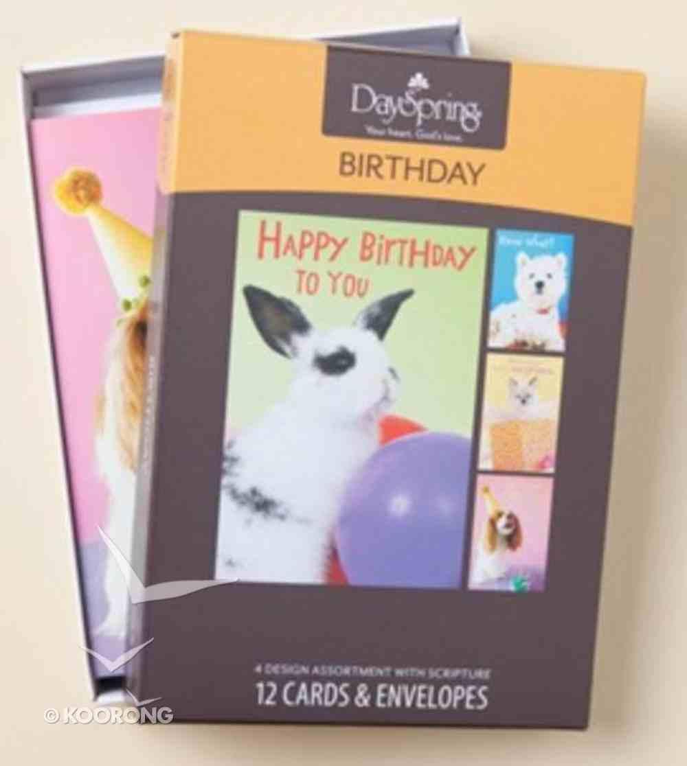 Boxed Cards Birthday: Cute & Cuddly Box