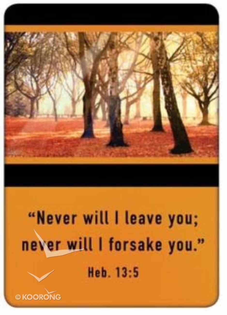 Friendship Magnet: Never Will I Leave You, Hebrews 13: Novelty