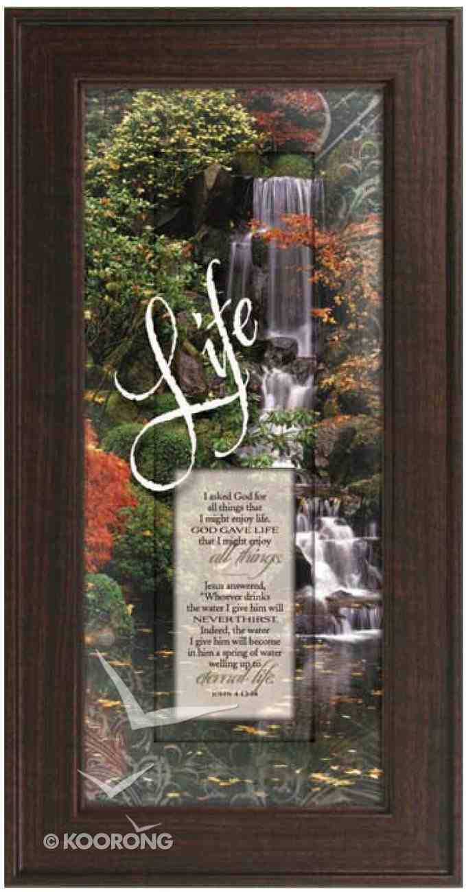 "Framed Plaque: Life (8"" X 16"") (Words Of Grace) Plaque"