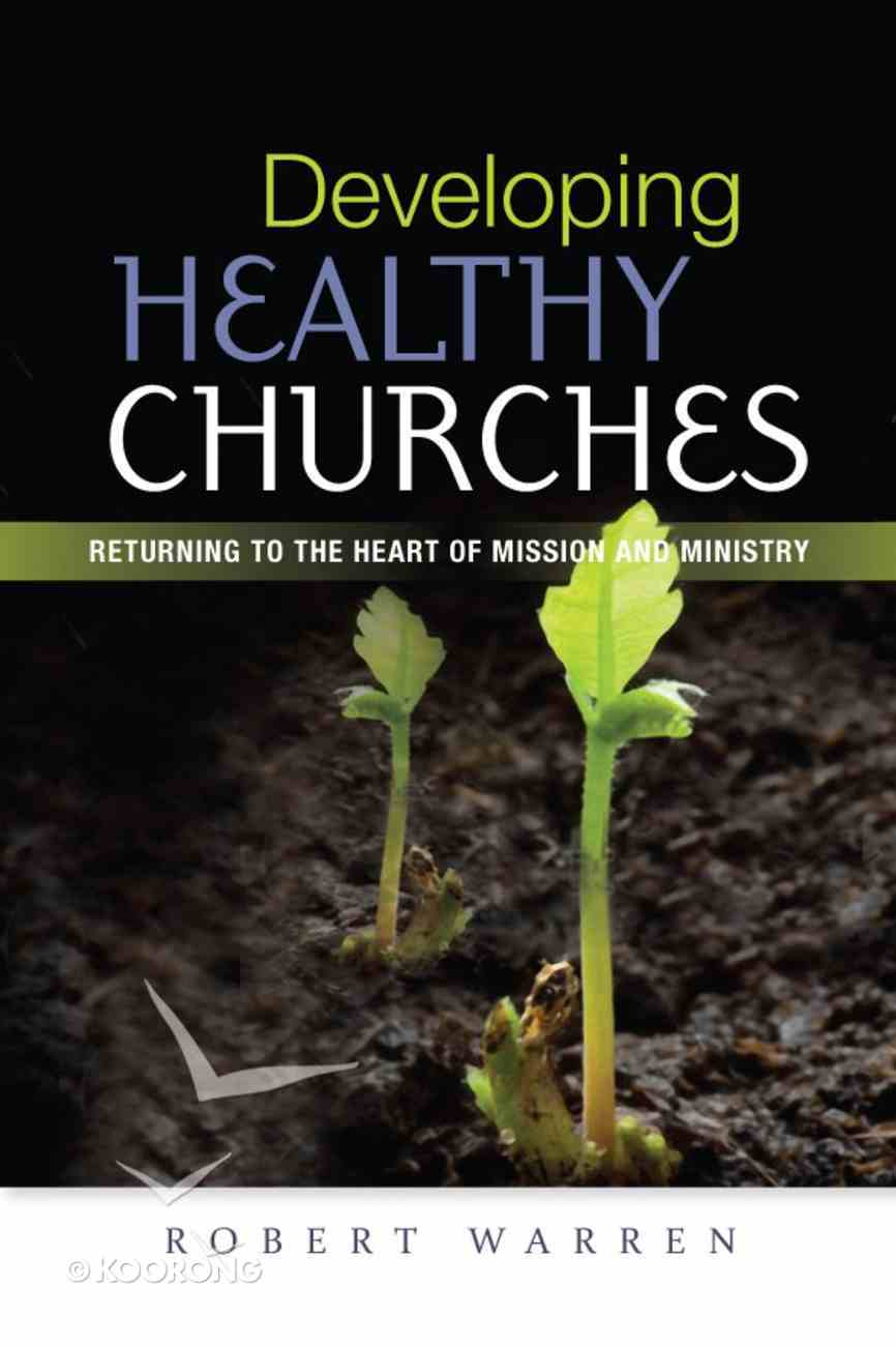 Developing Healthy Churches Paperback