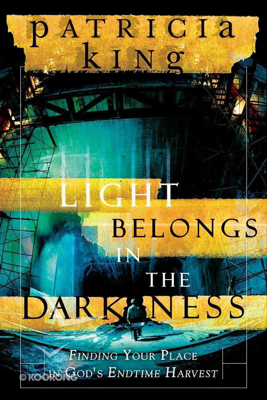 The Light Belongs in the Darkness eBook
