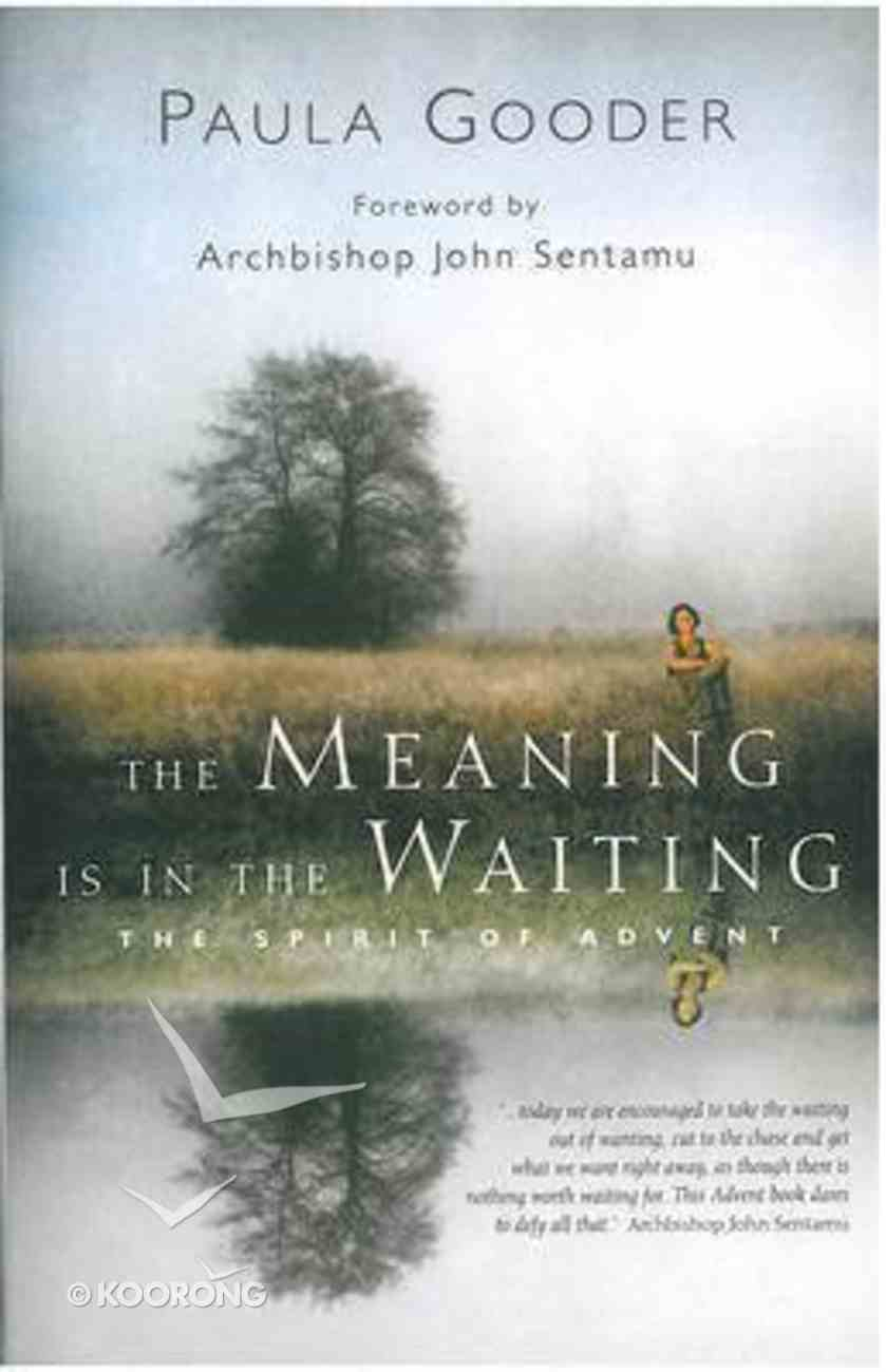 The Meaning is in the Waiting Paperback