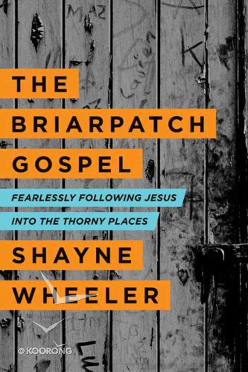 The Briarpatch Gospel Paperback