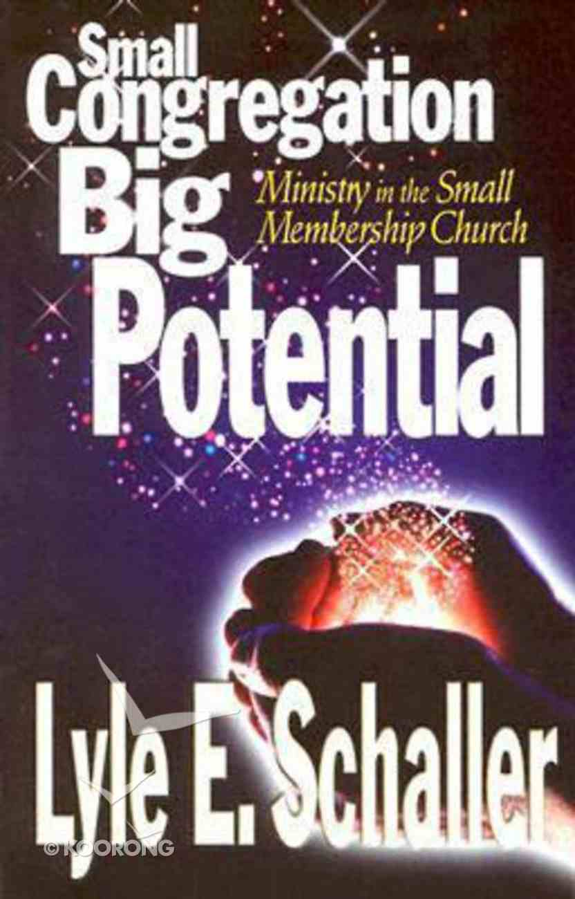 Small Congregation Big Potential Paperback