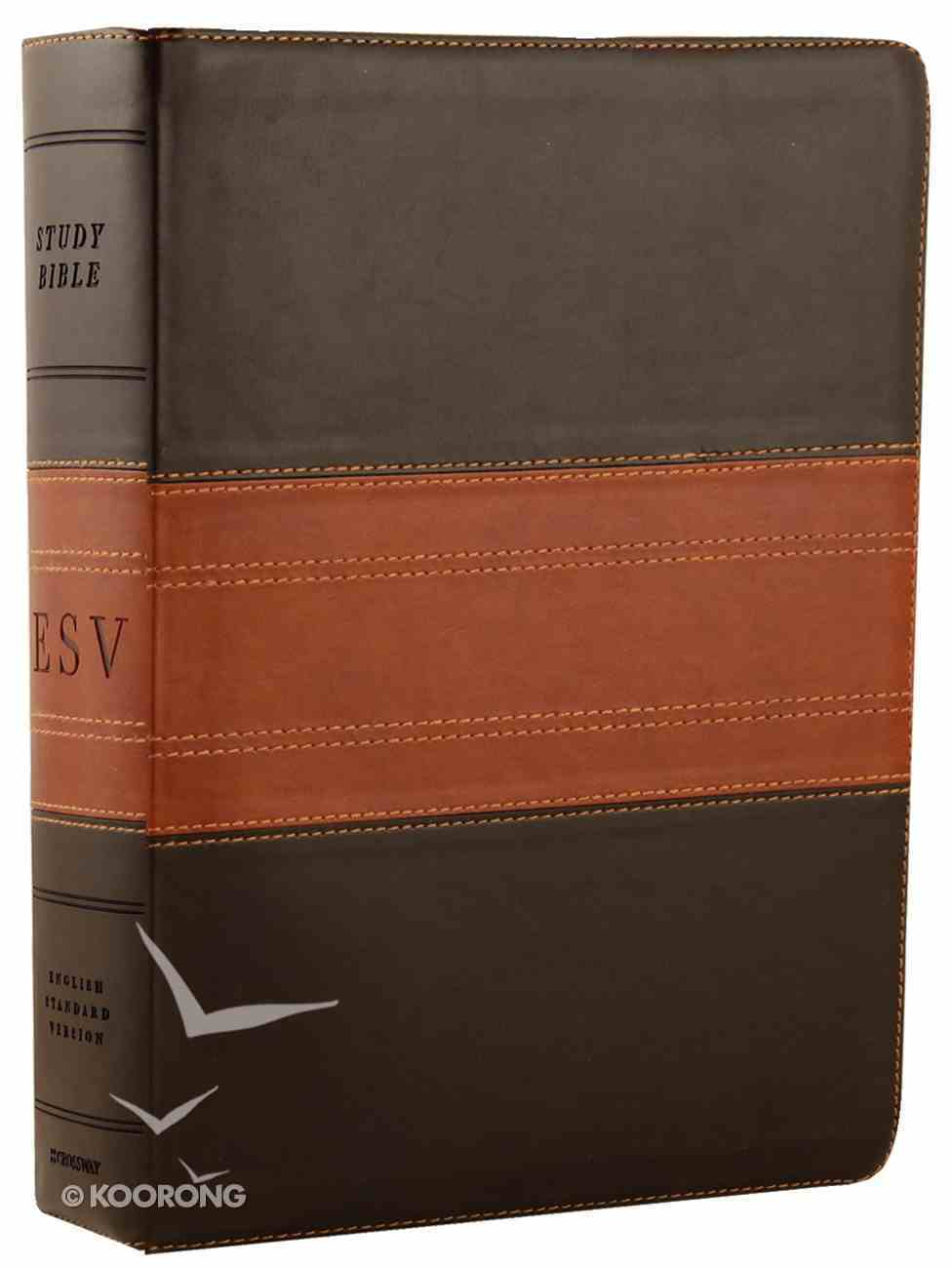 ESV Study Bible Forest/Tan Trail Design (Black Letter Edition) Imitation Leather