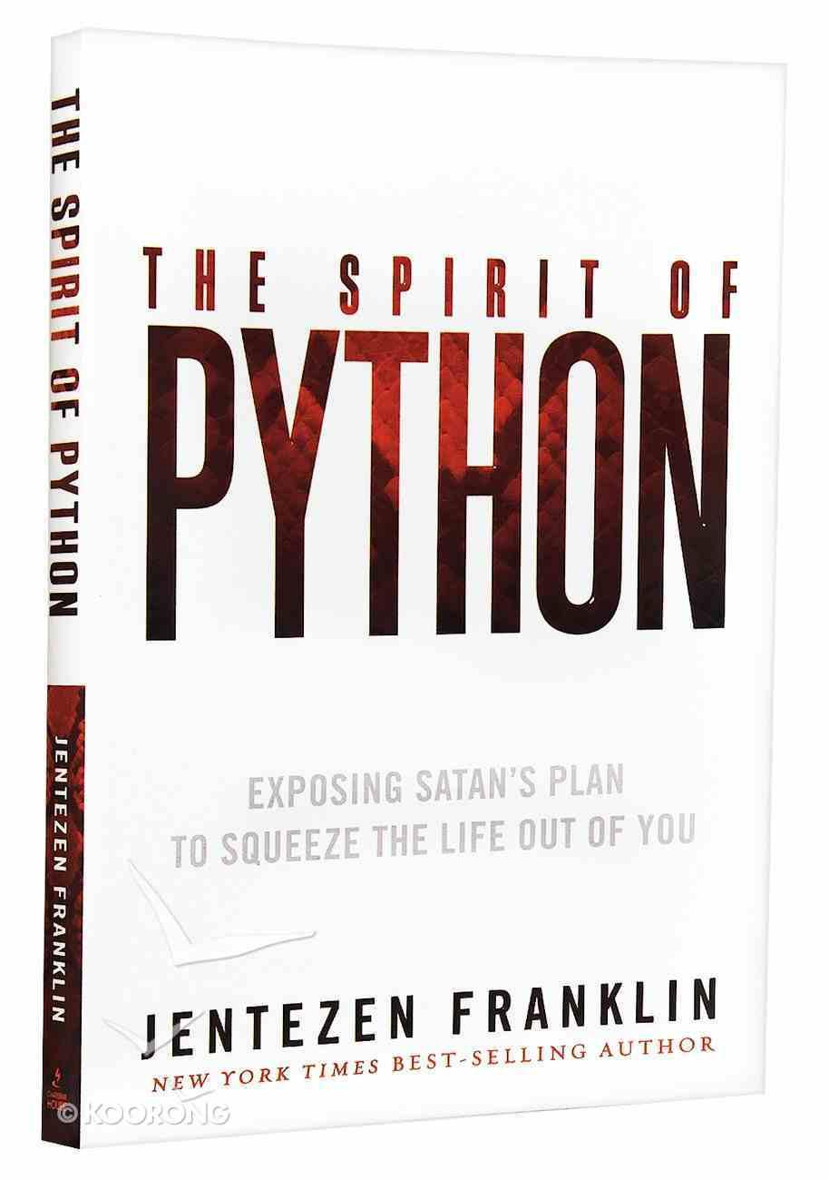The Spirit of Python Paperback