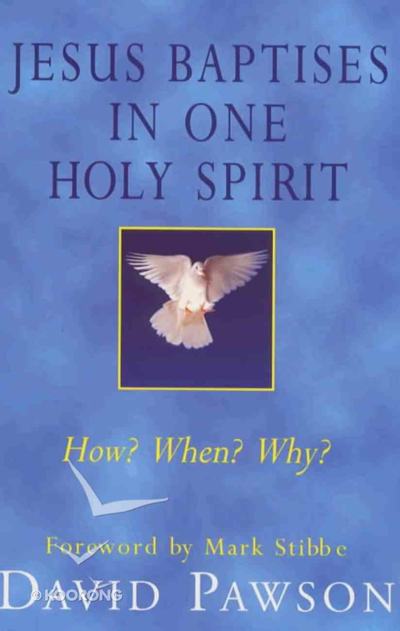 Jesus Baptises in One Holy Spirit Paperback