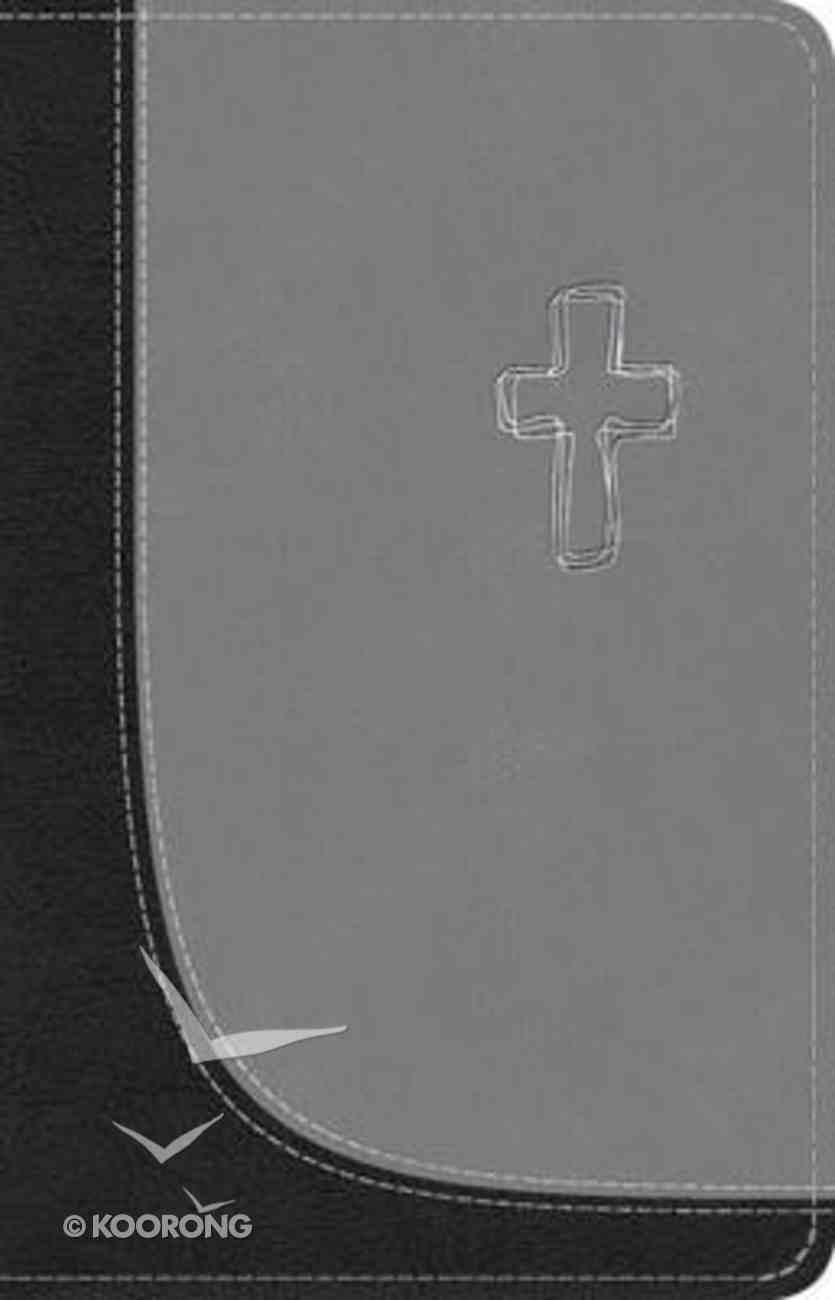 TNIV Popular With Concordance Soft-Tone 06 Imitation Leather