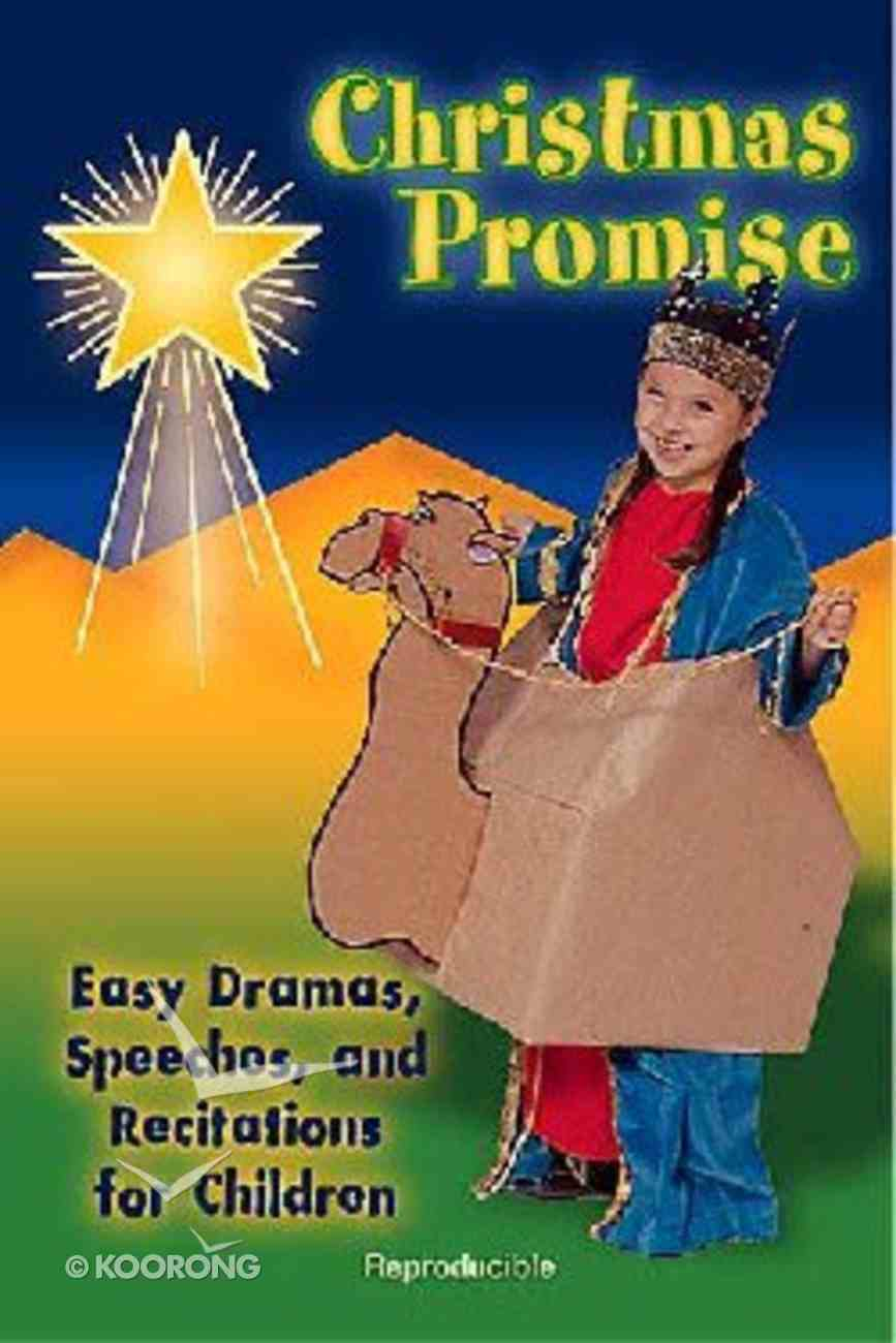 Christmas Promise Paperback
