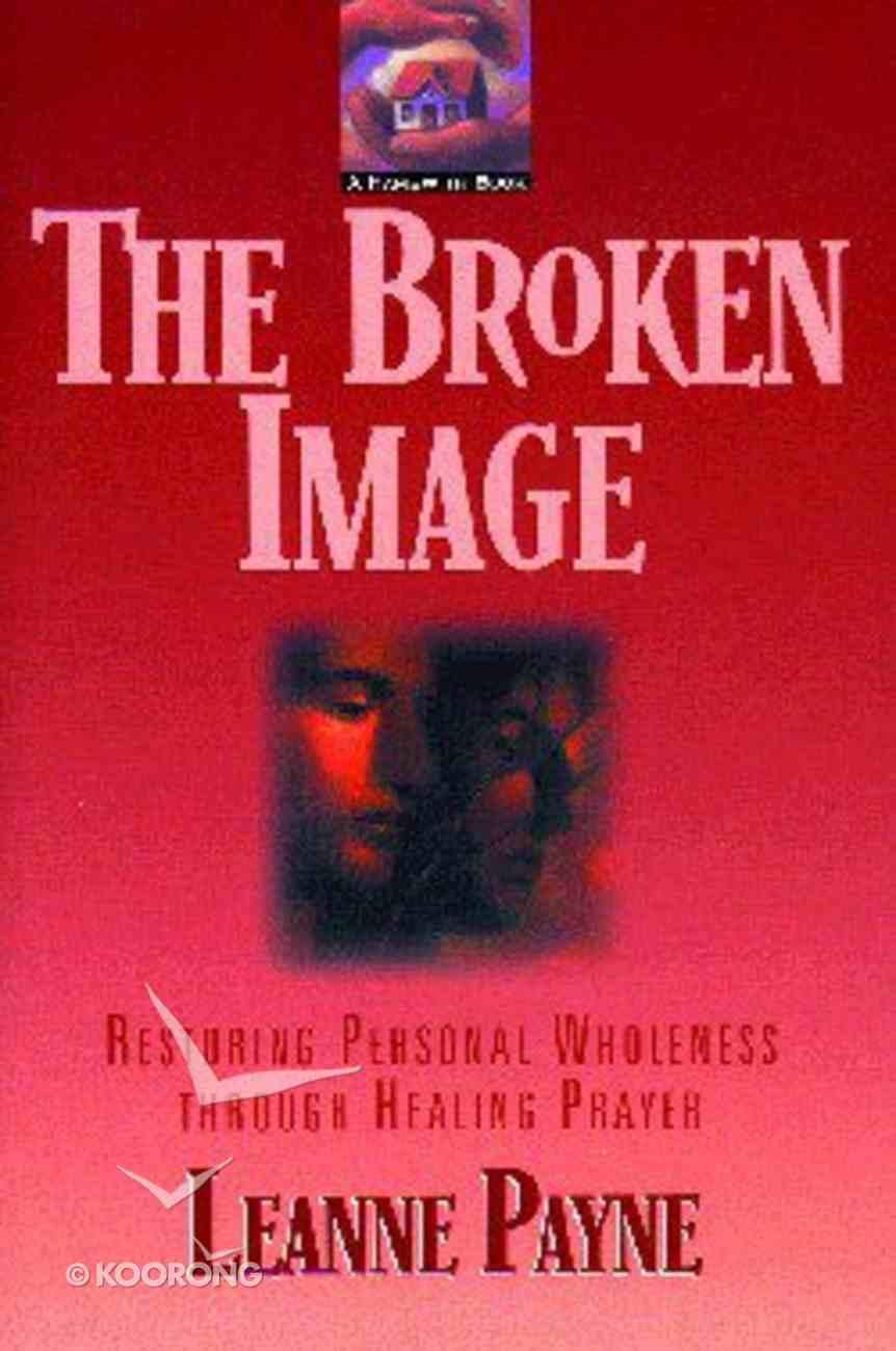 Broken Image Paperback