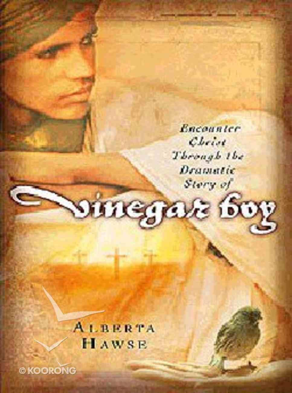 Vinegar Boy Paperback