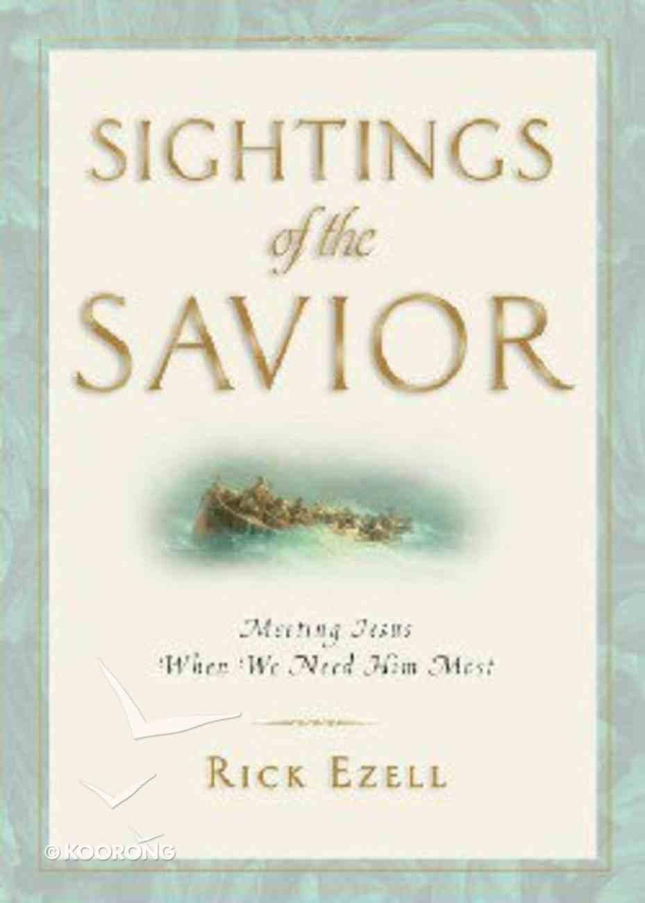 Sightings of the Savior Paperback