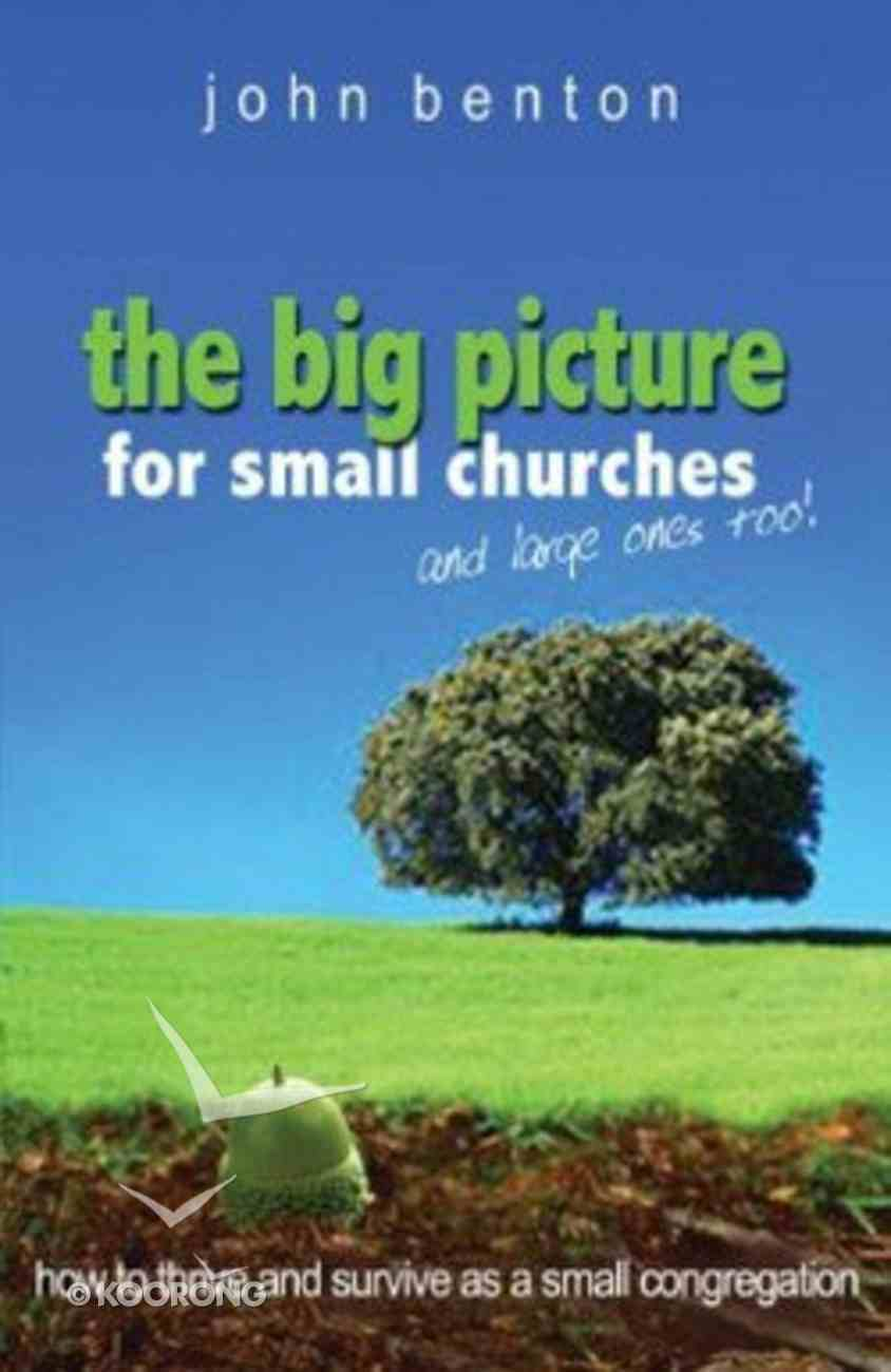 The Big Picture For Small Churches and Large Ones Too Paperback
