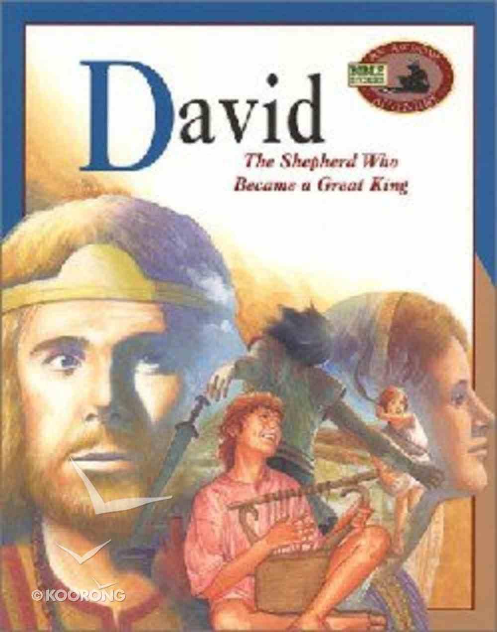 David (Awesome Adventure Bible Stories Series) Paperback