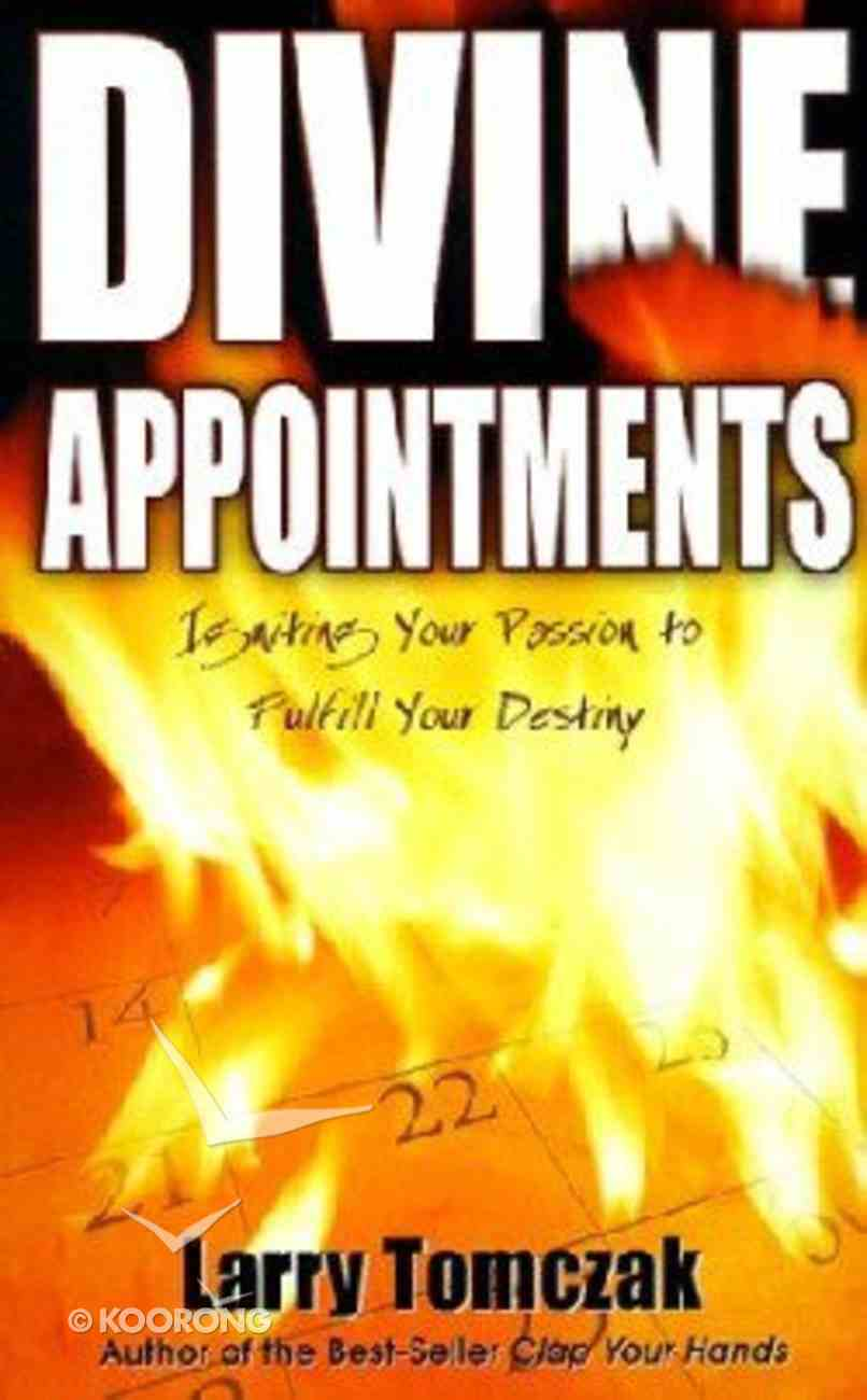 Divine Appointments Paperback
