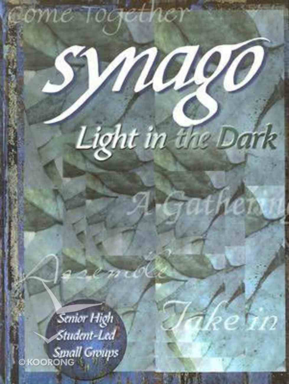 Light in the Dark (Leader Guide) (Synago Small-group Resources Series) Paperback