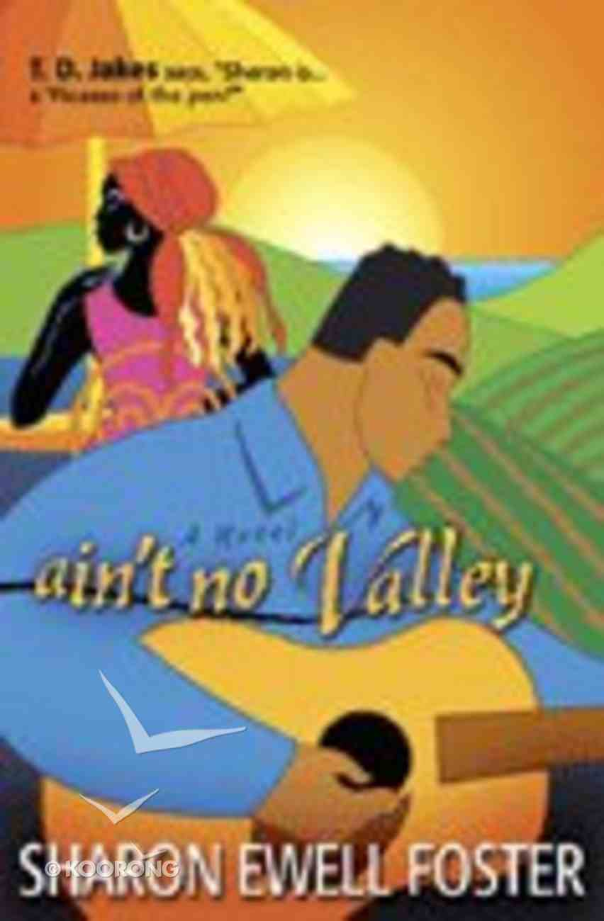 Ain't No Valley Paperback