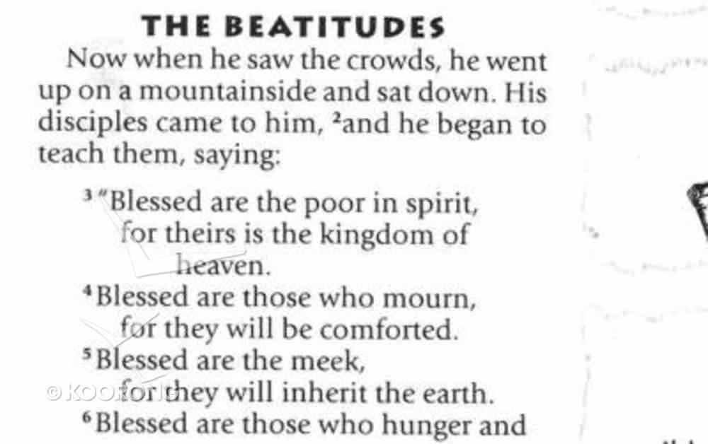 NIV Treasure Study Bible For Kids Paperback